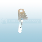 Ziton Fire Alarm Panel Enable Key